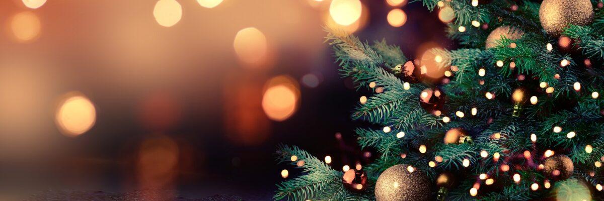 Bartsbeans Kerstbanner